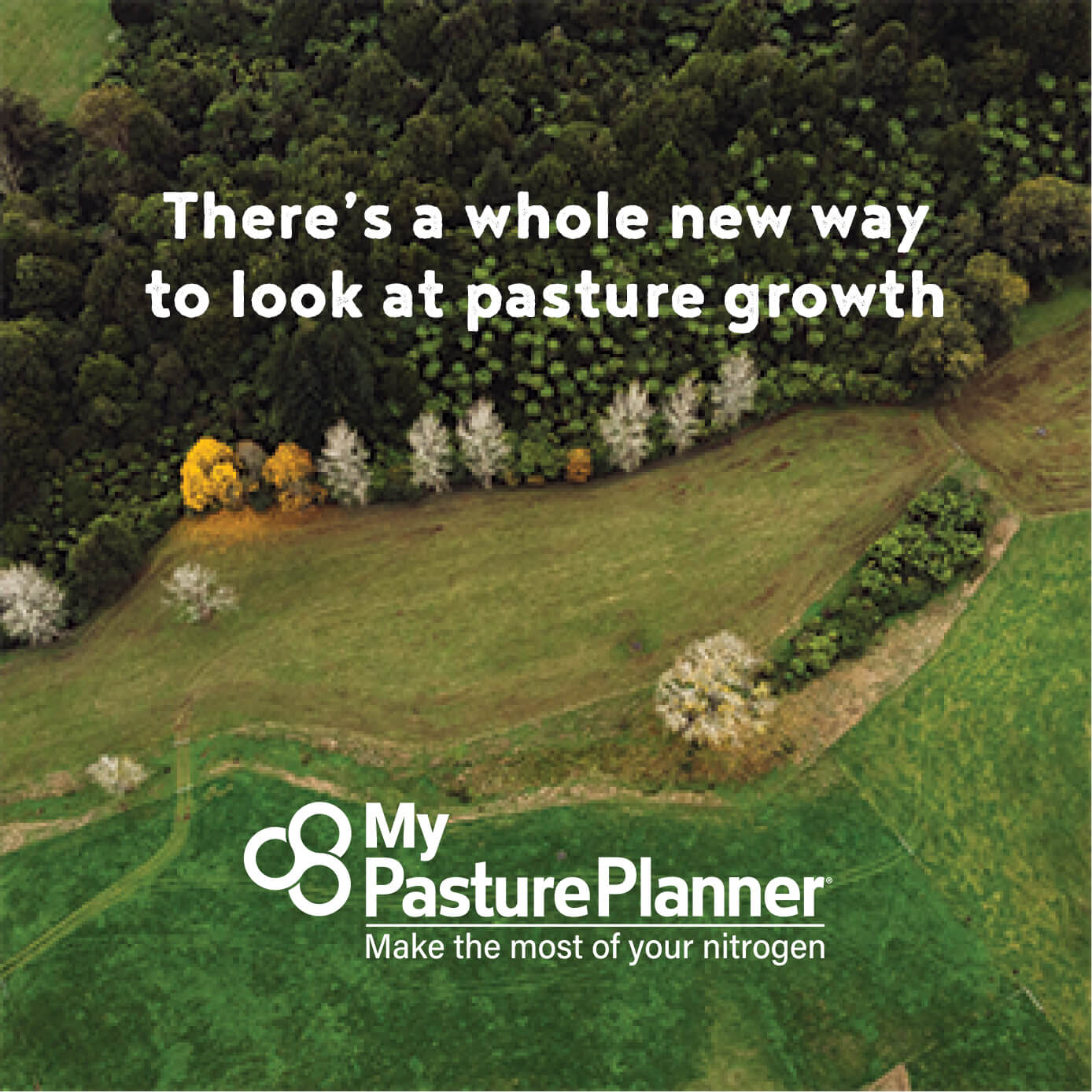 There's a whole new way to look at pasture growth
